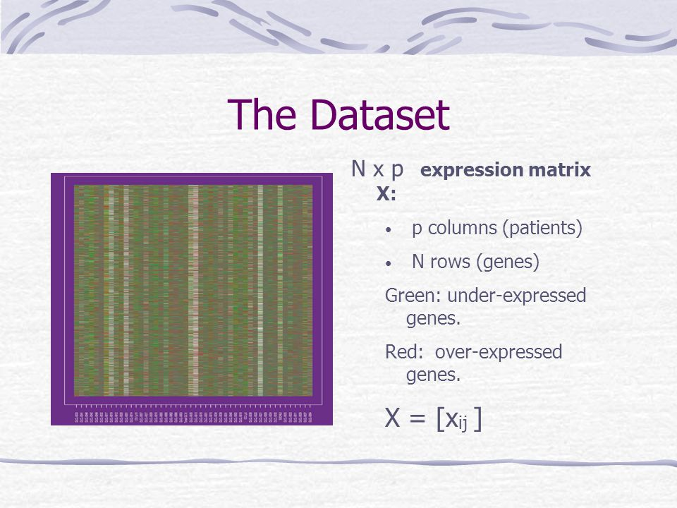 The Dataset X = [xij ] N x p expression matrix X: p columns (patients)